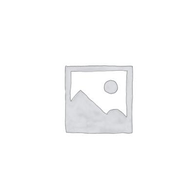 Seagull Meriln – Spruce and Mahogany