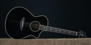 Breedlove Black Magic Concert